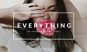 EVERYTHING preset bundle 4358352