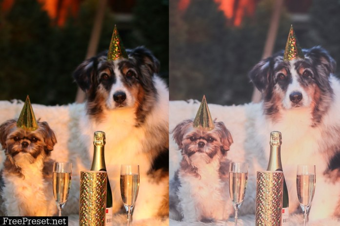 5 Lightroom Presets, New Year Party 4424549