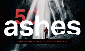 50 Ashes Lightroom Presets and LUTs