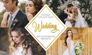 Entire Wedding Collection 4295531