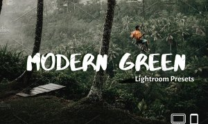 Green Lightroom Presets XMP DNG 4324621