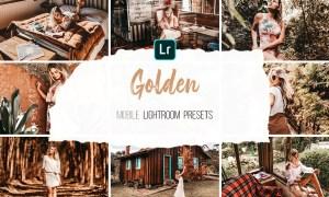 Mobile Lightroom Presets - Golden 4316546