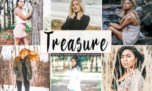 Treasure Mobile & Desktop Lightroom Presets