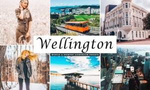 Wellington Mobile & Desktop Lightroom Presets