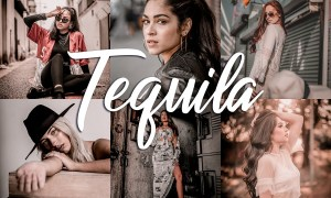 10 Lightroom Presets - Tequila 3814187