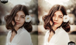 10 Romance Photoshop Actions, ACR Preset