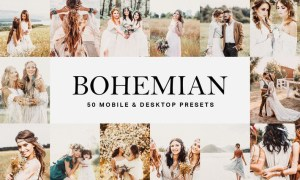 50 Bohemian Lightroom Presets and LUTs