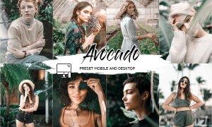 Avocado Lightroom Presets + Luts 4510015