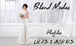 Blend Modes Profiles LR7.3 ACR10.3