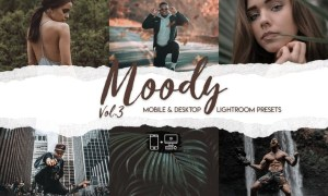Moody Lightroom Presets Vol. 3