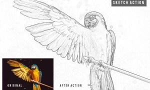 Sketch Action  YL7U8EJ