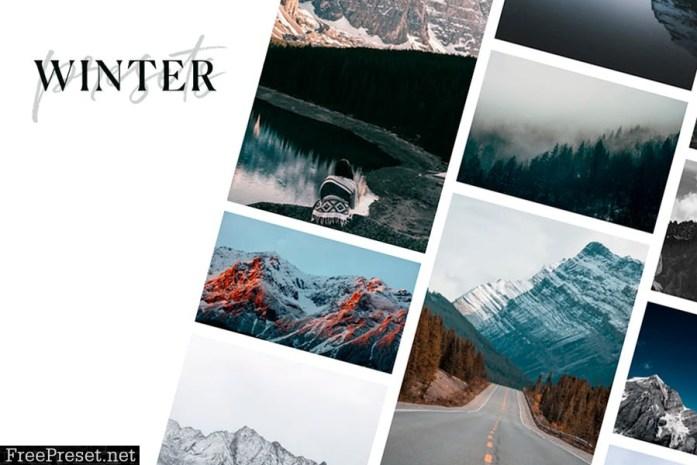 Winter Lightroom presets + Brushes