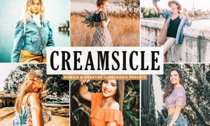 Creamsicle Mobile & Desktop Lightroom Presets