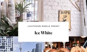 Ice White Mobile Lightroom Preset 4494287
