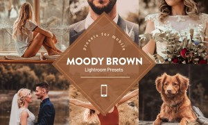 Moody Brown Lightroom Preset 4593839
