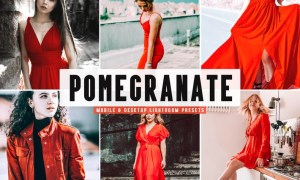 Pomegranate Mobile & Desktop Lightroom Presets