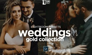 WEDDING GOLD PACK LR PRESETS 4623262