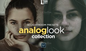 ANALOG LOOK Lightroom Presets Bundle 4618994