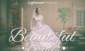 Beautiful Brides Lightroom Presets Vol.2 3950690