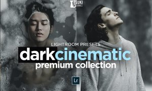 DARK CINEMATIC LIGHTROOM PRESETS 4623271