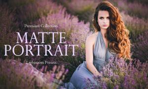 Matte Portrait Lightroom Presets 3395171