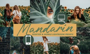 Mobile Lightroom Presets MANDARIN 3116056