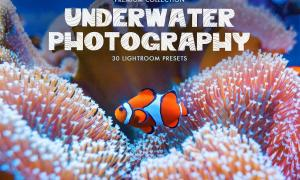 Underwater Photography Presets 4725471