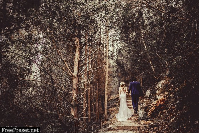 Wedding Lightroom Presets 2922071