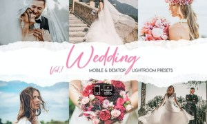 Wedding Lightroom Presets Vol. 1