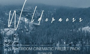 WILDRENESS || Cinematic Preset Pack 4570533