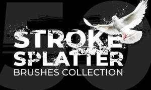 50 Stroke Splatter Photoshop Brushes Collection DQY9KCT