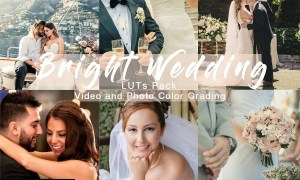 BRIGHT WEDDING - LUTs Pack 4934911