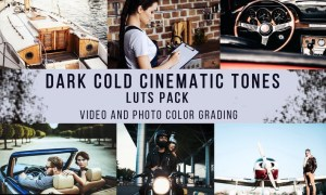Dark Cold Cinematic Tones | LUTs Pack