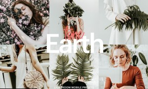 Lightroom Preset-Earth Tone Theme 4973057