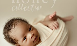 Meadow and Ash - Honey Collection Newborn Presets