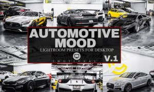 12 Automotive Mood Lightroom Presets