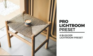6 Blogger Lightroom Preset