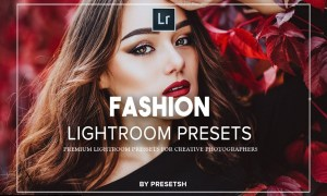 Fashion Lightroom Presets 5125195
