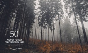 50 Moody Forest LUTs (Look Up Tables)