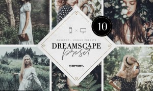 Dreamscape Lightroom Presets Bundle 5251136