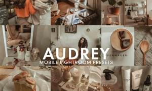 5 AUDREY Mobile Lightroom Presets 5275673