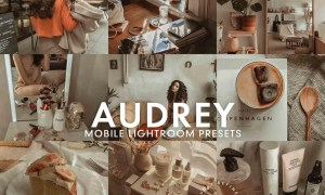 5 AUDREY Mobile Lightroom Presets 5275673