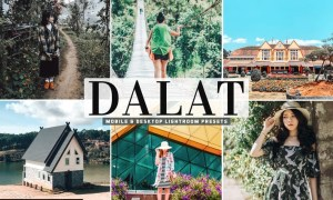 Dalat Mobile & Desktop Lightroom Presets