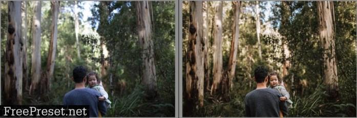 Forest & Field Preset Collection - Desktop & Mobile