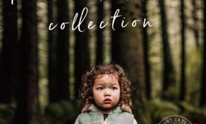 Forest & Field Preset Collection - Desktop & Mobile