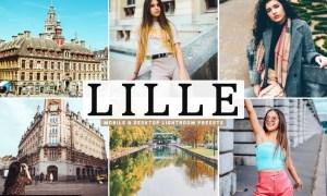 Lille Mobile & Desktop Lightroom Presets
