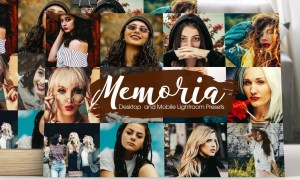 Memoria Lightroom Presets 5173873