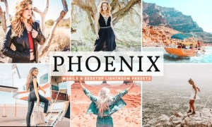 Phoenix Mobile & Desktop Lightroom Presets