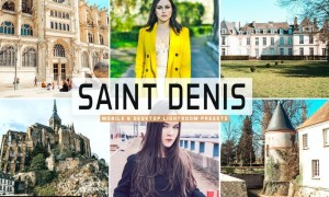 Saint Denis Mobile & Desktop Lightroom Presets
