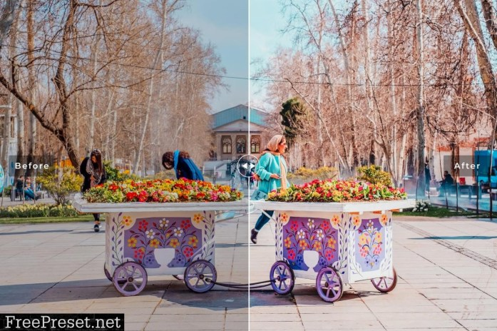 Tehran Pro Lightroom Presets 5335342